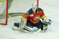 RANK NAMED SPHL EASTON PLAYER OF THE WEEK