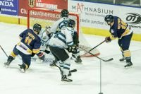 OFFENSE SLOWS IN 1-0 LOSS TO ICEGATORS